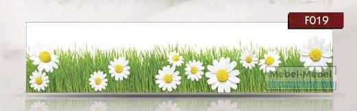 Кухонные цветы